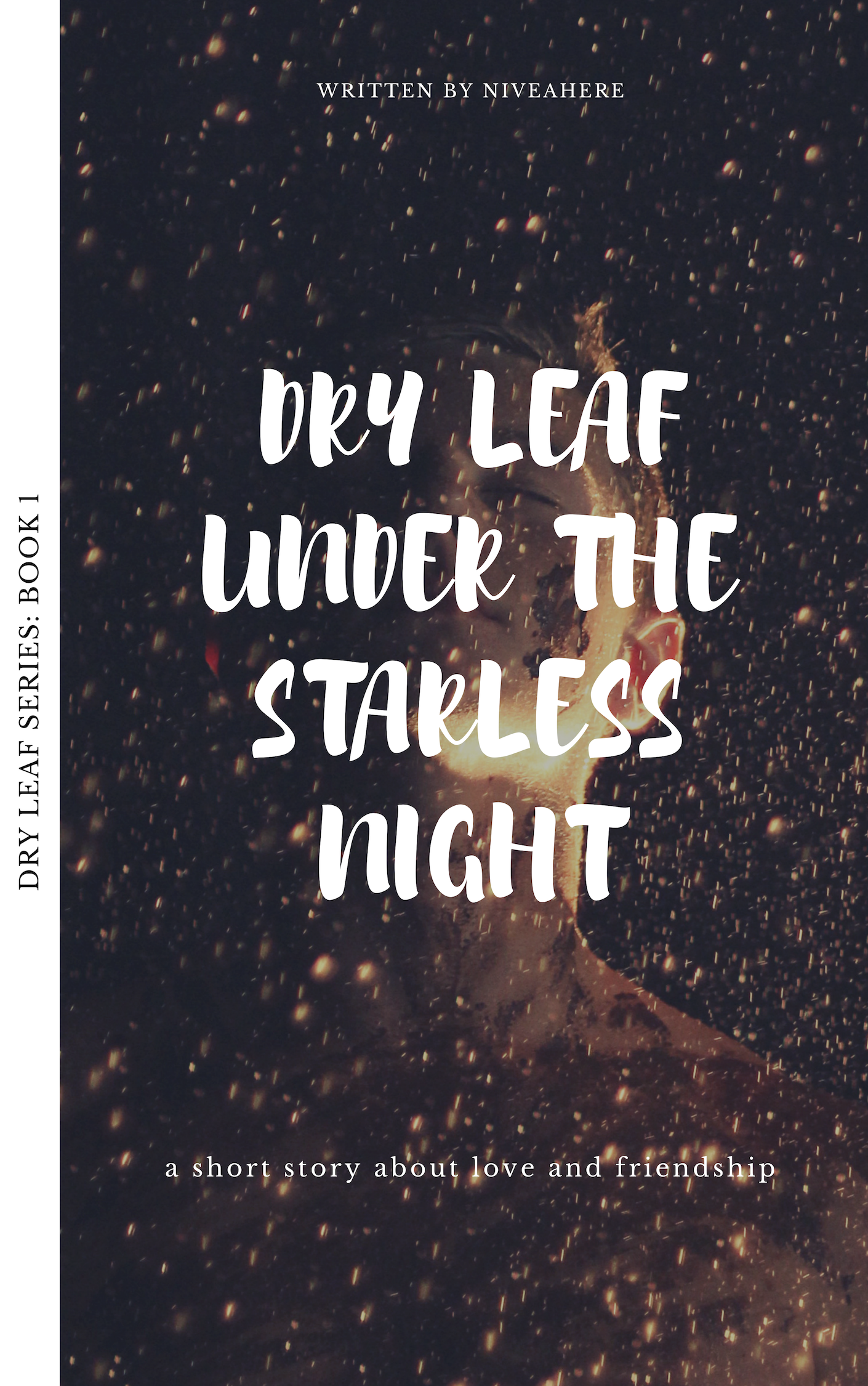 Dry Leaf Under The Starless Night
